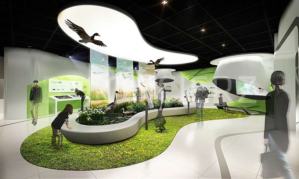 Little Dragonflies Ecology Exhibition 꼬마잠자리 생태학습관